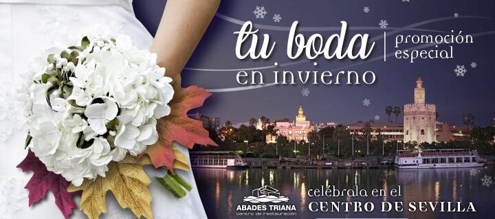 banner boda invierno
