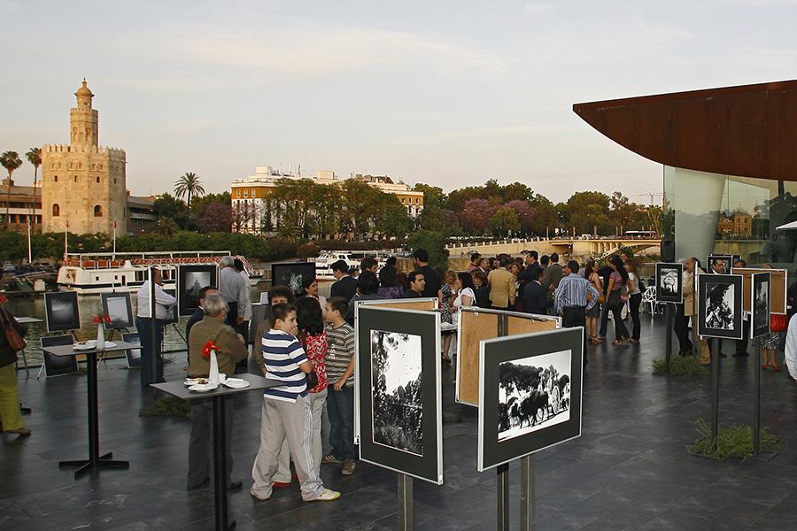 terraza-mirador-117